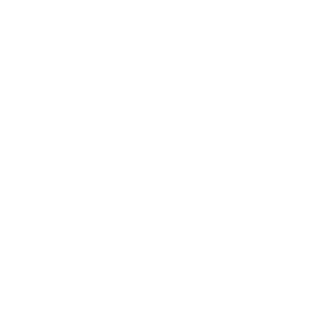 CaseStudy-Icon-Goals